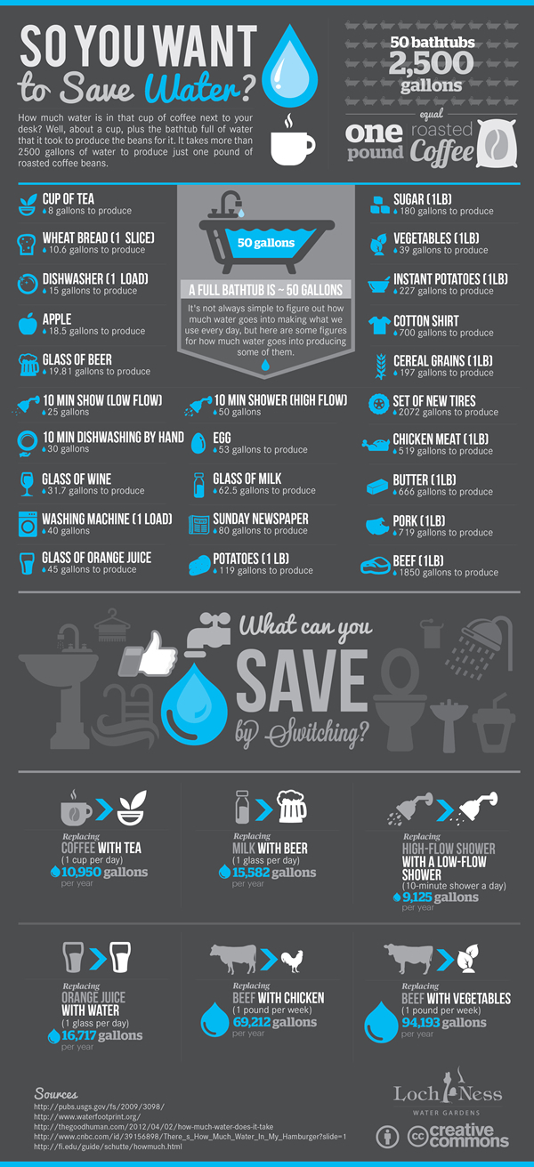 So you want to save Water? 'Infographic Design'