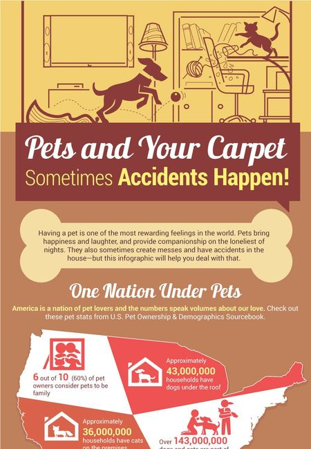 1409 infographic coles fine flooring carpets and pets compressed
