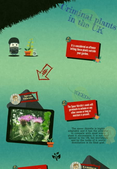Fantastic gardeners criminal plants infographic final min