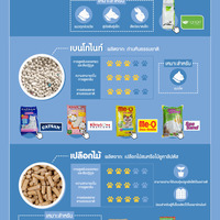 How to choose cat litter edit2 signage