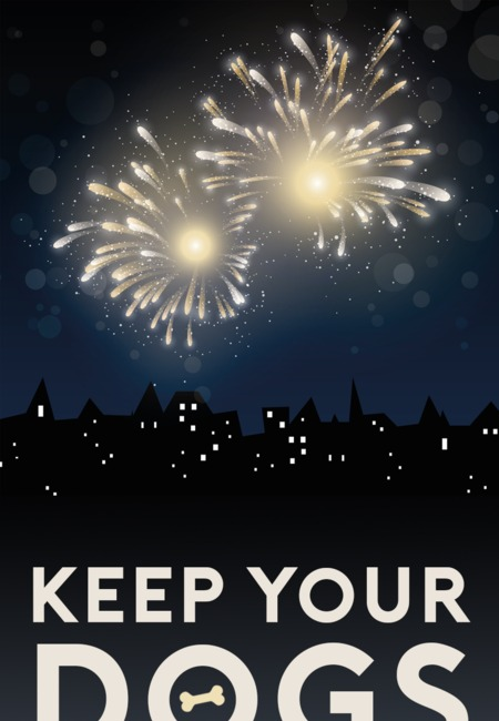 Keep your dog happy bonfire night