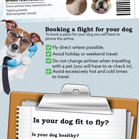 Travelling in europe with your dog