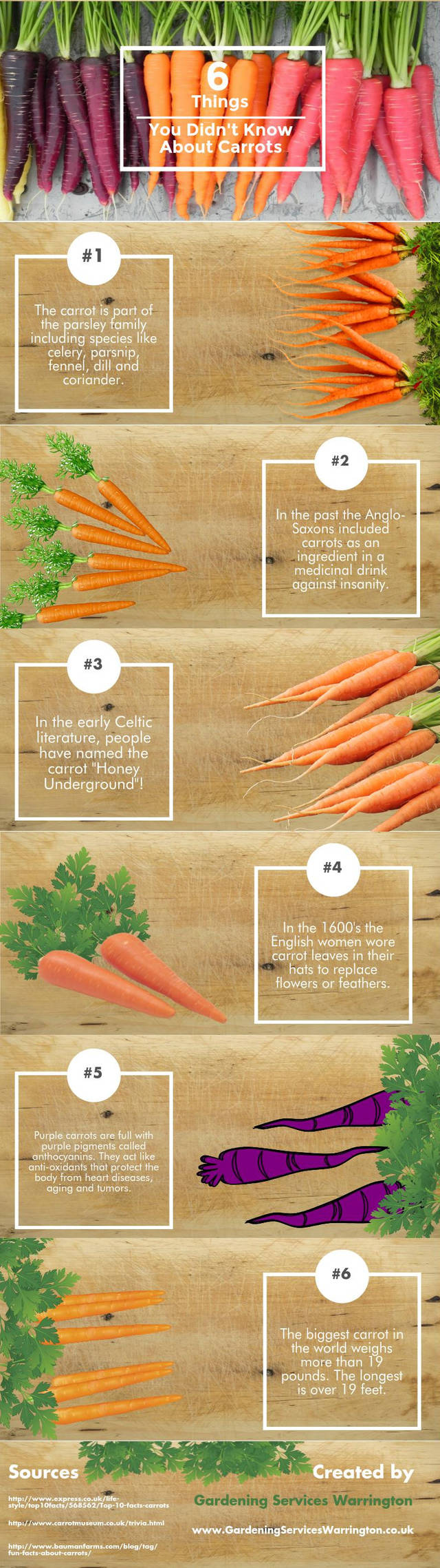 6 things you didn t know about carrots
