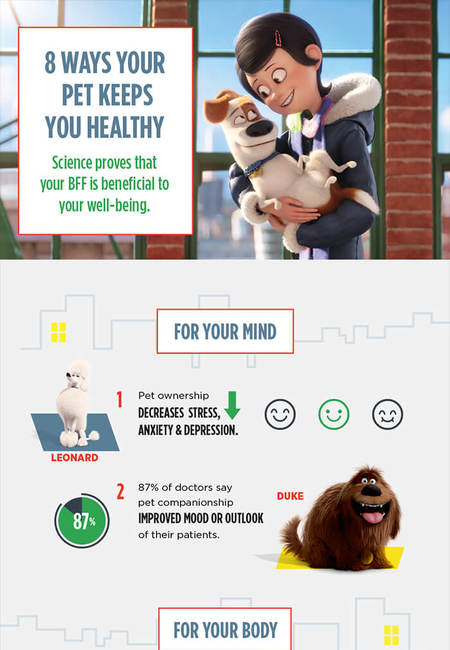 8 ways your pet keeps you healthy 1