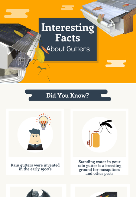 Interesting facts about gutters