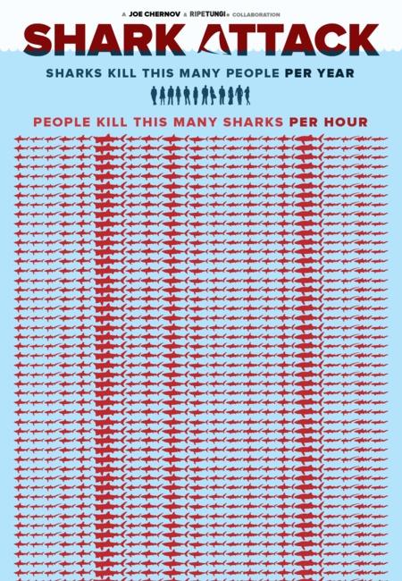Shark attack stop finning infographic (1)