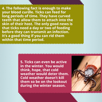 Infographic 160 interesting facts i bet you never knew about tick control