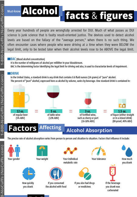 Alcohol levels changing over time infographic