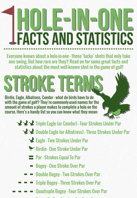 Cog hole in one facts and statistics infographic