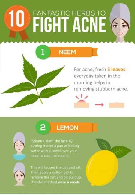 10 herbs cure acne