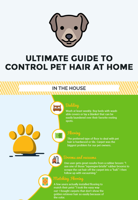 Ultimate guide to control pet hair at home   pet vacuum lab