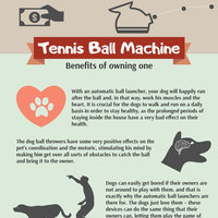 Woof dog ball thrower buying guide infographic