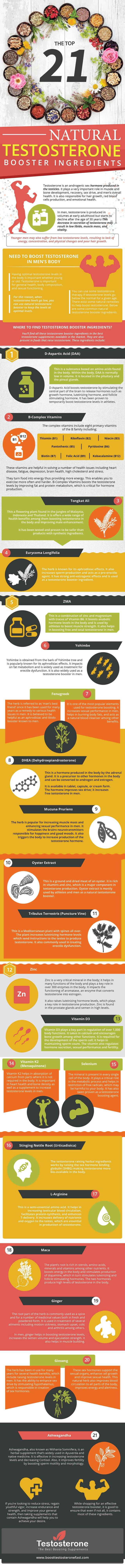 Natural testosterone booster ingredient infographic