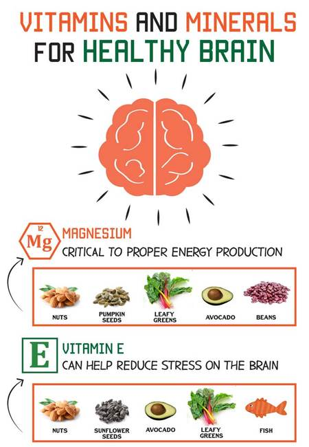 Vitamins and minerals for the brain infographic