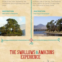 Swallowsamazonforest 6