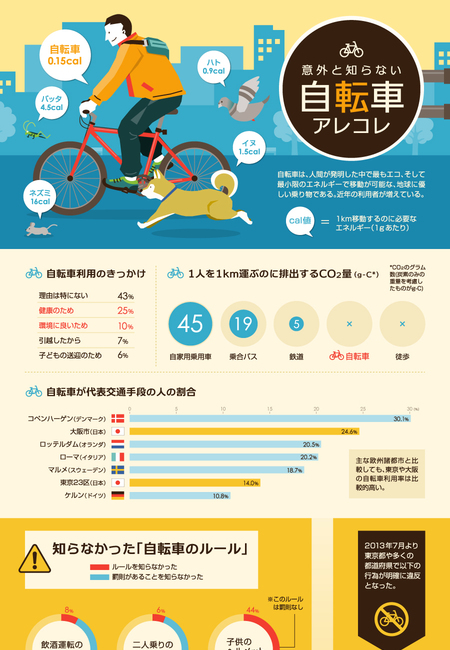 Bicycle infographic 900px