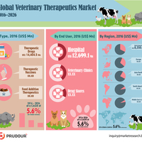 Veterinary therapeutic market infographic plaza