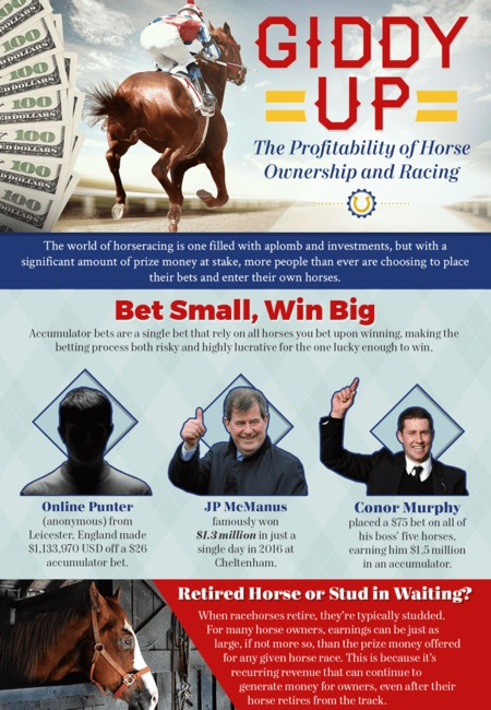 The profitability of horse ownership and racing infographic