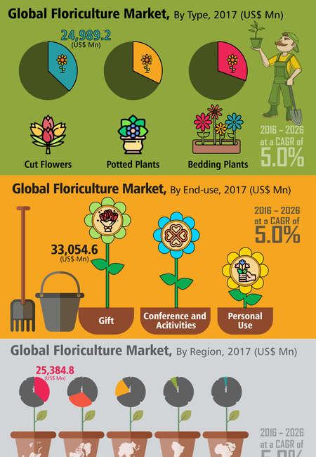 Global floriculture market infographic