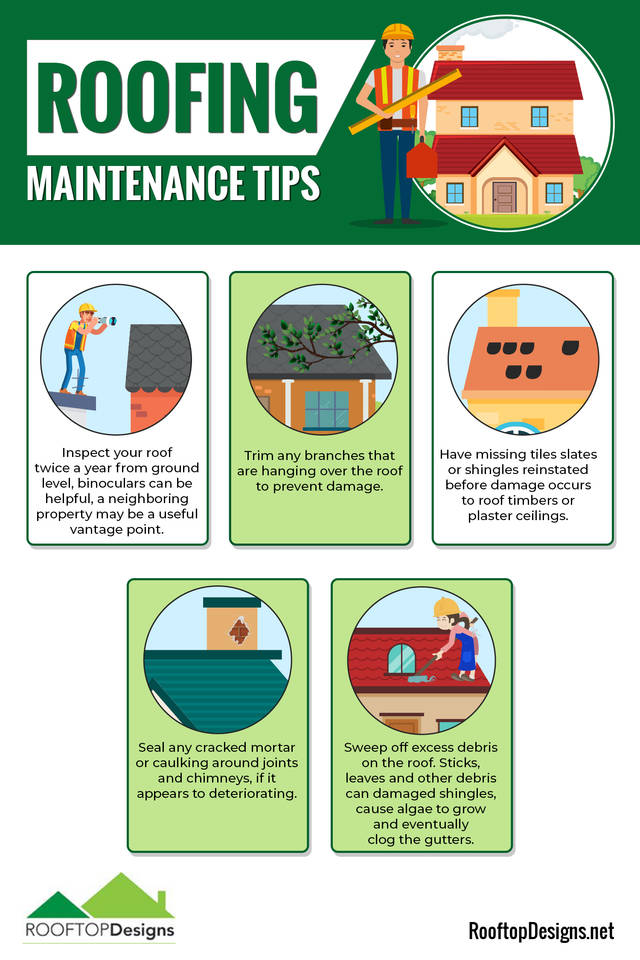 Roofing maintenance tips  infographic