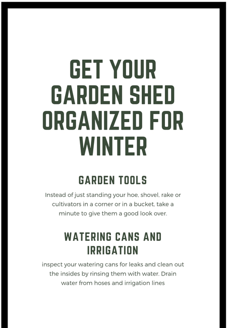 Get your garden shed organized for winter