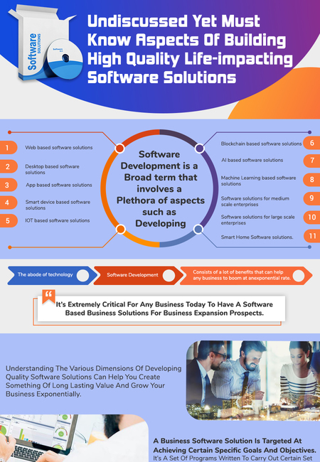 Software development company infographic