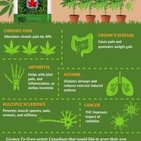 Conditions treatable with medical marijuana
