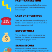 Landline casino features infographic