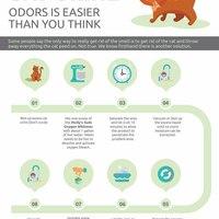 Get rid cat urine odors 1000