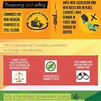 Cannabis legalisation and regulation