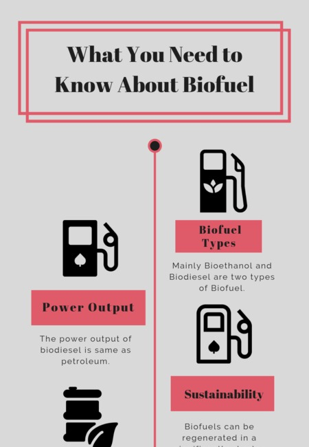 What you need to know about biofuel