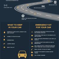 Woclleydon vehicle checklist infographic
