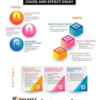 Cause and effect essay 1