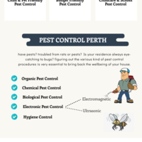 Pest control perth infographic