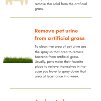 Things you must know to%c2%a0clean pet waste from artificial grass