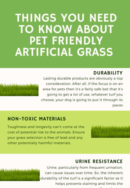 Things you need to know about pet friendly artificial grass