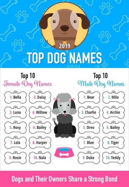 2019 dog names