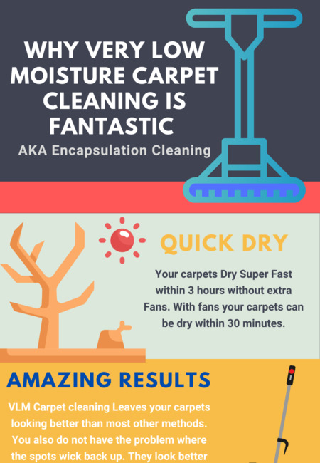 Why very low moisture vlm carpet cleaning is awesome 1